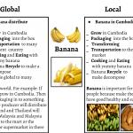 Organics farm (2)
